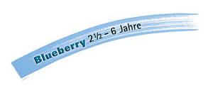 Lerngrafik Blueberry.