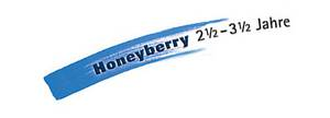 Lerngrafik Honeyberry.